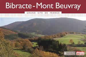 Bibracte-Mont Beuvray