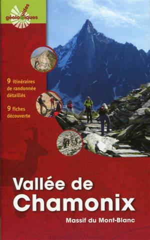 Vallée de Chamonix : massif du Mont-Blanc