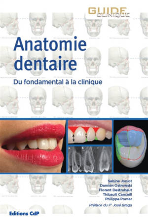 Anatomie dentaire : du fondamental à la clinique