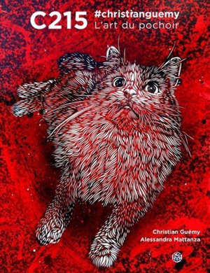 C215, #christianguemy : l'art du pochoir