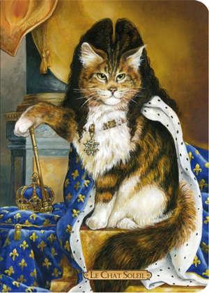 Le chat soleil : cahier