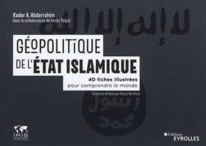 Géopolitique de l'Etat islamique : 40 fiches illustrées pour comprendre le monde