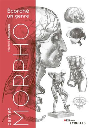Carnet morpho : écorché, un genre