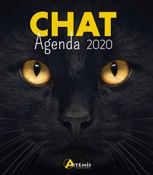 Chat : agenda 2020
