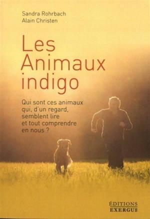 Les animaux indigo : qui sont ces animaux qui, d'un regard, semblent lire et tout comprendre en nous ?