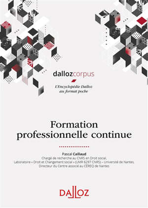 Formation professionnelle continue
