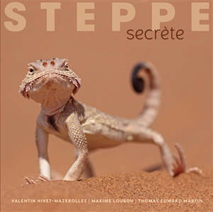 Steppe secrète