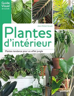 Plantes d'intérieur : plantes tendance pour un effet jungle