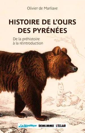 Histoire de l'ours dans les Pyrénées : de la préhistoire à la réintroduction