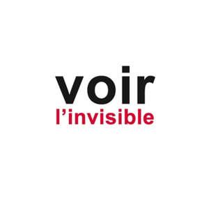 Voir l'invisible. Volume 2