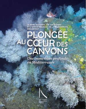 Plongée au coeur des canyons : une immersion profonde en Méditerranée