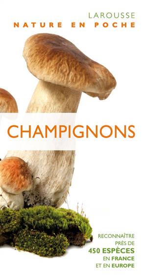 Champignons : reconnaître près de 450 espèces en France et en Europe