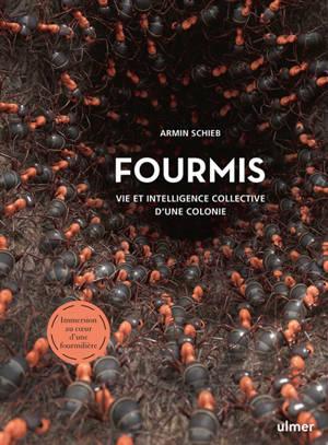 Fourmis : vie et intelligence collective d'une colonie : immersion au coeur d'une fourmilière