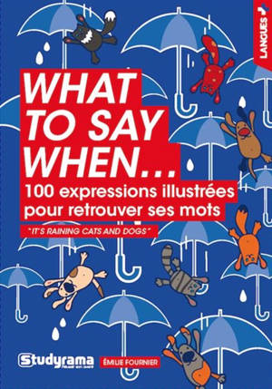 What to say when... : 100 expressions illustrées pour retrouver ses mots