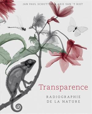 Transparence : radiographie de la nature