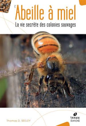 L'abeille à miel : la vie secrète des colonies sauvages