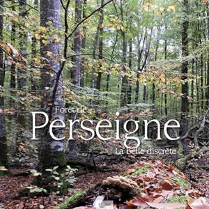 Forêt de Perseigne : la belle discrète