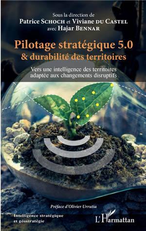 Pilotage stratégique 5.0 & durabilité des territoires : vers une intelligence des territoires adaptée aux changements disruptifs