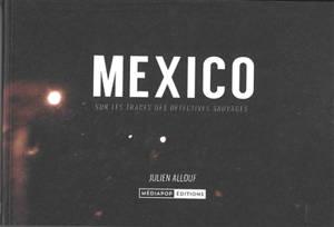 Mexico : sur les traces des Détectives sauvages