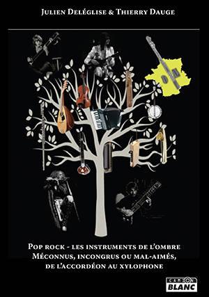 Pop rock : les instruments de l'ombre : méconnus, incongrus ou mal-aimés, de l'accordéon au xylophone