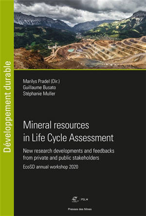 Mineral resources in Life Cycle Assessment : new research developments and feedbacks from private and public stakeholders