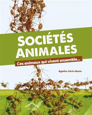 Sociétés animales : ces animaux qui vivent ensemble...