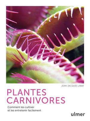 Plantes carnivores : comment les cultiver et les entretenir facilement