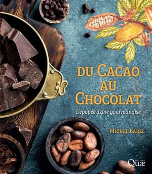 Du cacao au chocolat : l'épopée d'une gourmandise