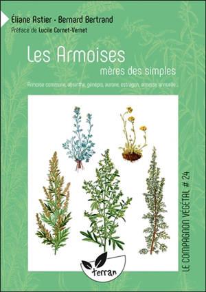 Les armoises, mères de simples : armoise commune, absinthe, génépis, aurone, estragon, armoise annuelle...
