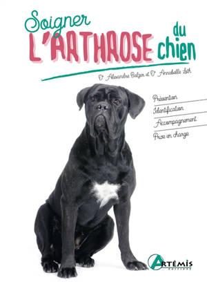 Soigner l'arthrose du chien
