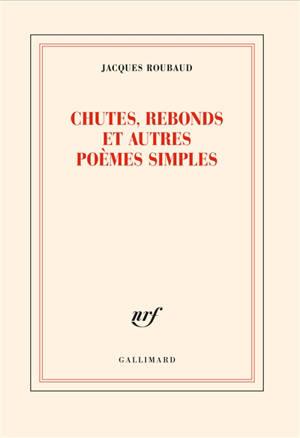 Chutes, rebonds et autres poèmes simples