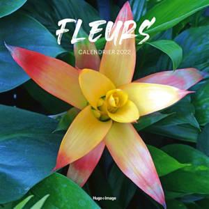 Fleurs : calendrier 2022