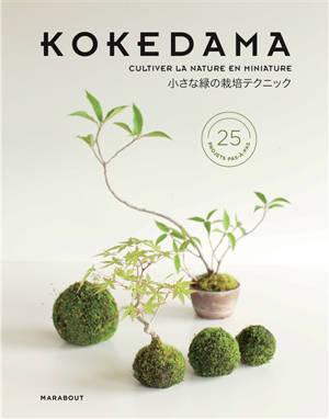 Kokedama : mini-bonsaïs & autres sculptures de mousse : comment cultiver la verdure en miniature ?