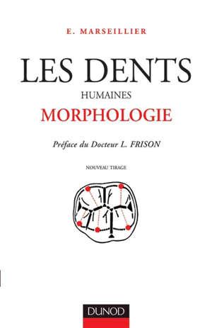 Les Dents humaines : morphologie