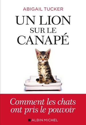 Un lion sur le canapé : comment les chats ont pris le pouvoir