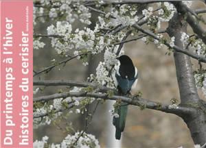 Du printemps à l'hiver : histoires du cerisier
