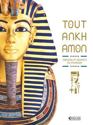 Toutankhamon : trésors et secrets du pharaon