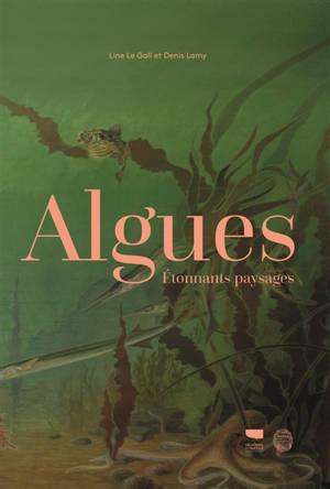 Algues : étonnants paysages