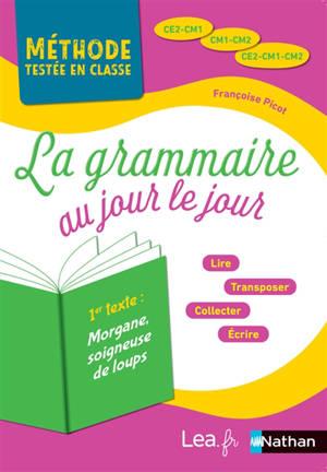 La grammaire au jour le jour, CE2, CM1, CM2 : 2019, année 2