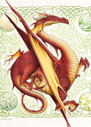 Dragon : cahier
