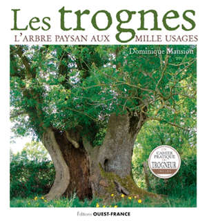 Les trognes : l'arbre paysan aux mille usages