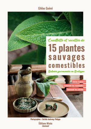 15 plantes sauvages comestibles en Bretagne : cueillette et recettes