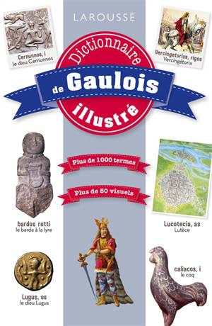 Dictionnaire de gaulois illustré : plus de 1.000 termes : plus de 80 visuels