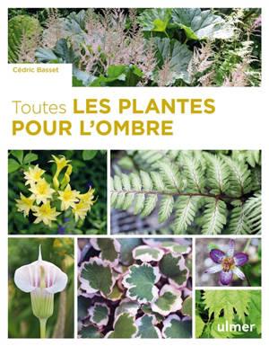 Toutes les plantes pour l'ombre