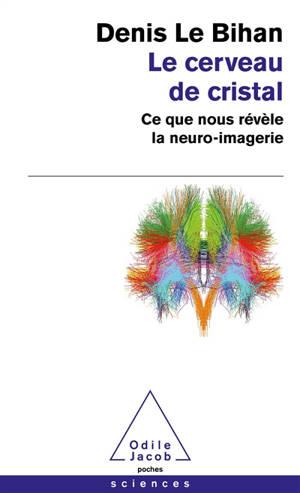 Le cerveau de cristal : ce que nous révèle la neuro-imagerie