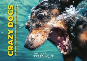 Crazy dogs : les chiens les plus cabots de la publicité mondiale