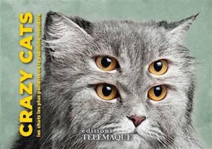 Crazy cats : les chats les plus poilants de la publicité mondiale
