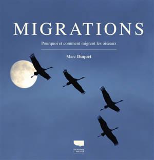 Migrations : pourquoi et comment migrent les oiseaux