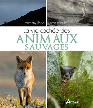 La vie cachée des animaux sauvages