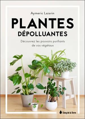 Plantes dépolluantes : découvrez les pouvoirs purifiants de vos végétaux